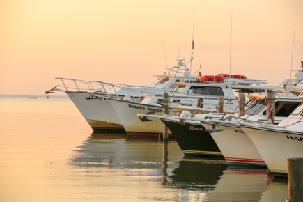A feelt of fishing boats sit ready to take anglers out to fish the Chesapeake Bay in Talbot County, Maryland.