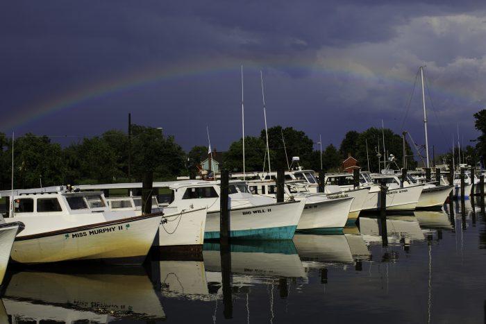 rainbow_tilghman